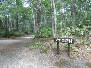 20140921_31